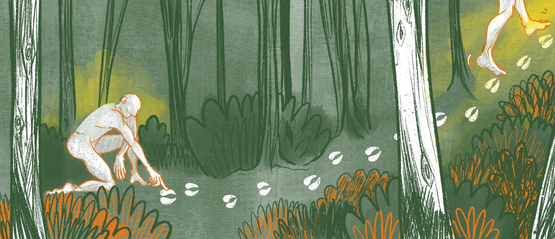 la forêt avant le Néolithique, histoire illustrée, copin.