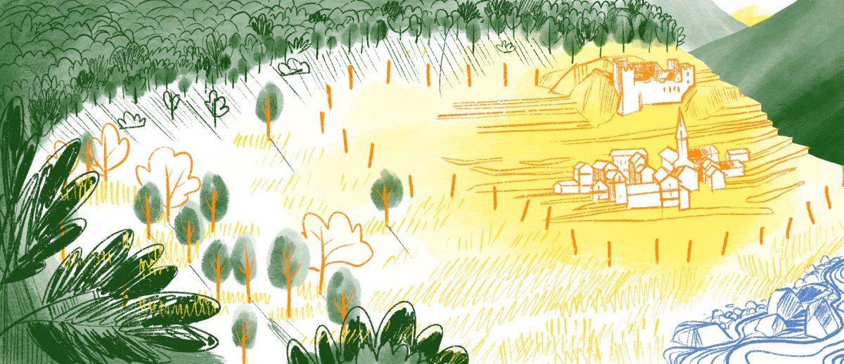 La forêt au Moyen-Age, histoire illustrée, Copin