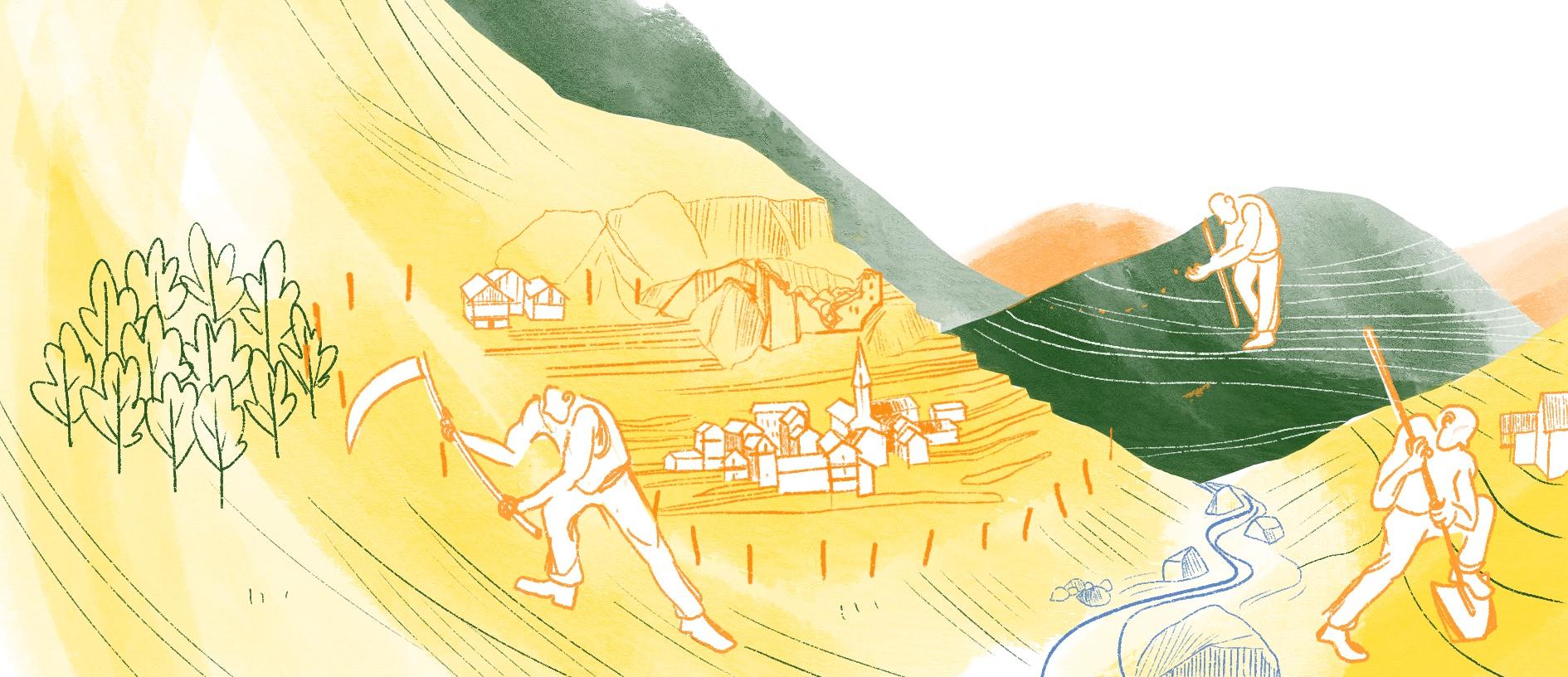La forêt au 20e siècle, histoire illustrée, Copin.