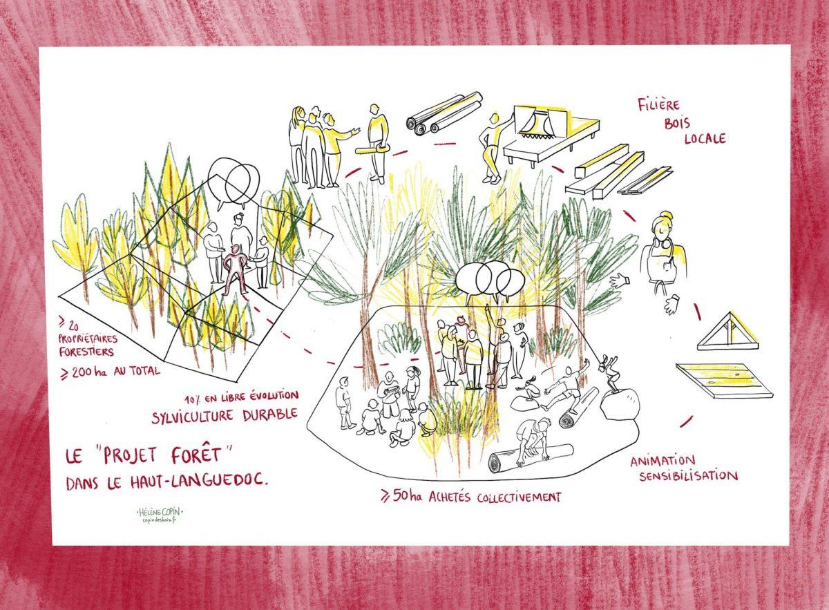 Acheter des forêts en collectif, projet haut-Languedoc, copin des bois.
