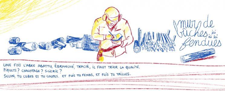 Tri du bois, bûcheron gestionnaire, Mathias Bonneau