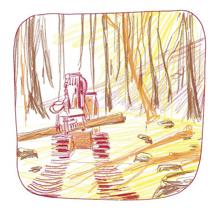 AMAP bois bûche, Drôme, Dryade, concurrence abatteuse