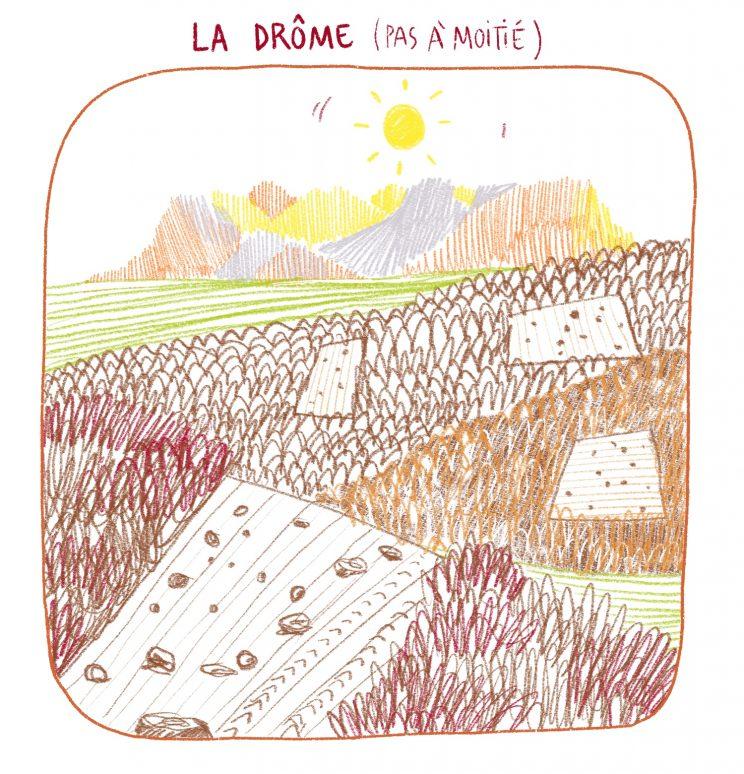 AMAP bois bûche, Drôme, Dryade, contexte dromois