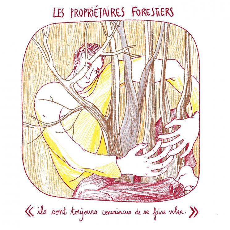 AMAP bois bûche, Drôme, Dryade, propriétaire forestier