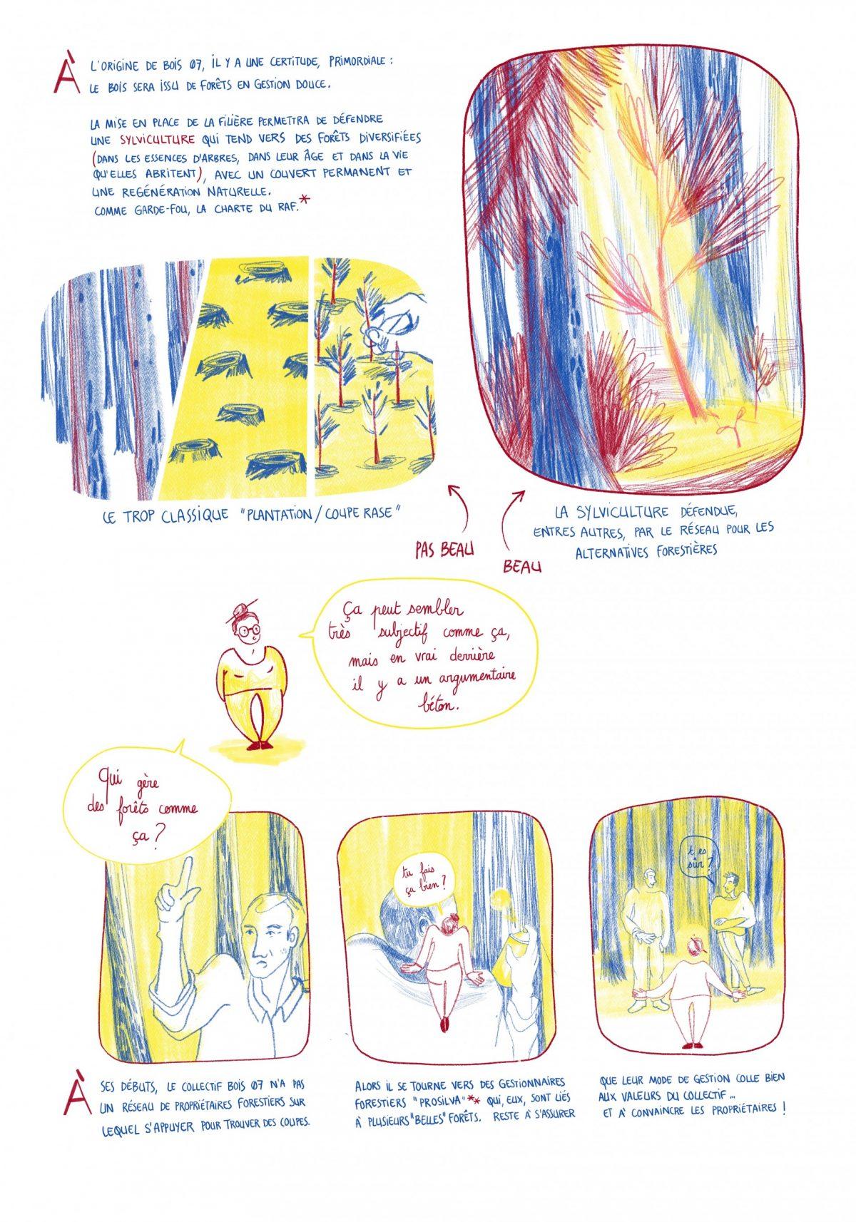 Bois 07 sylviculture durable, reportage dessiné, copindesbois
