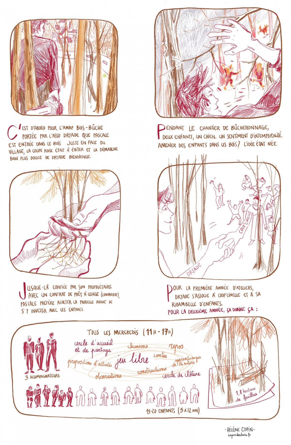 Les enfants des bois, création du projet, association Dryad, Drôme