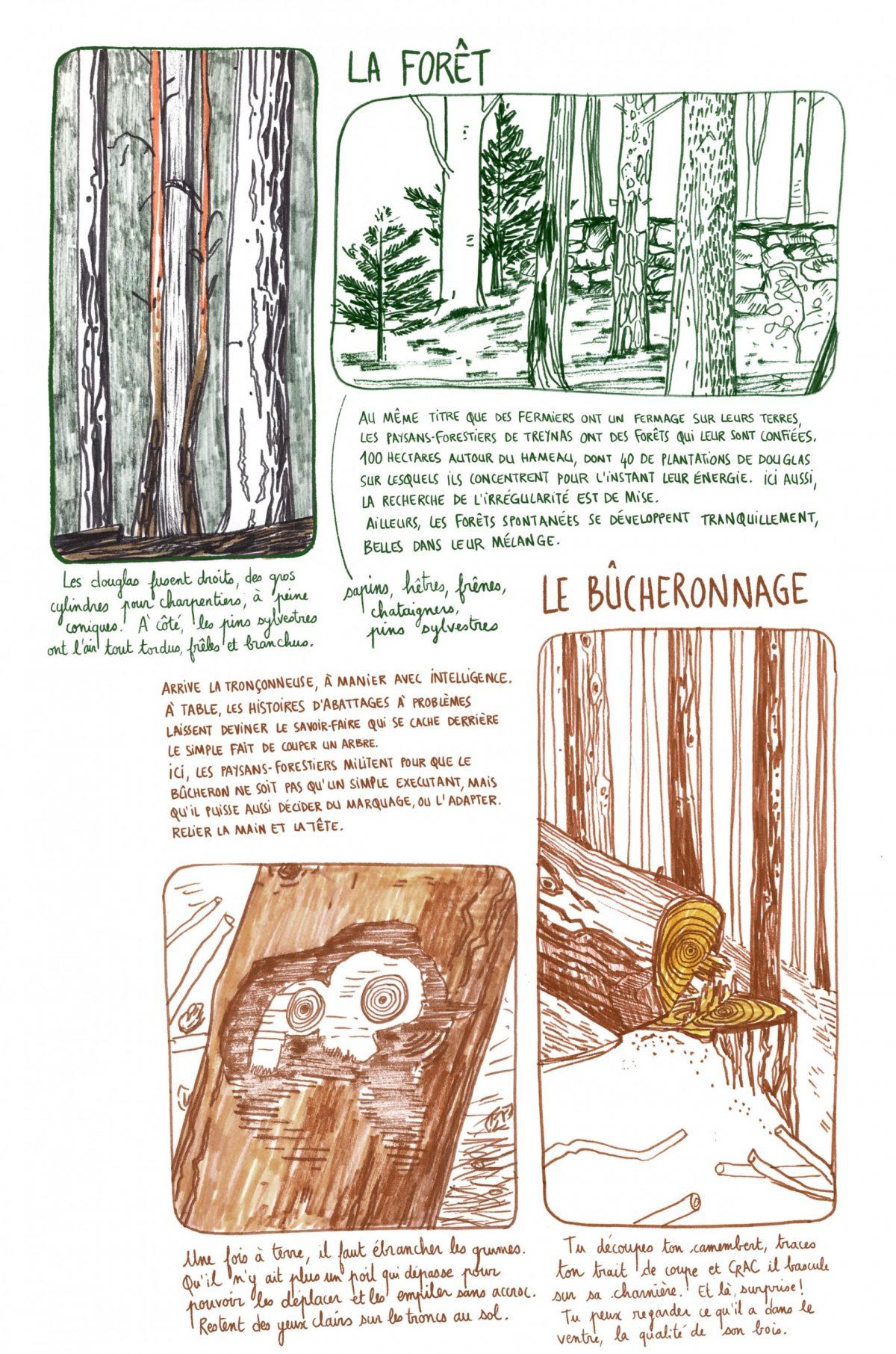 La filière bois à Treynas, partie 1