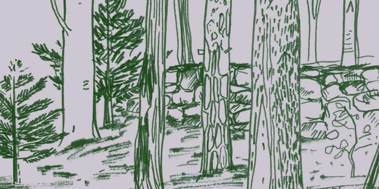 Treynas, paysans forestiers en Ardèche, copin des bois