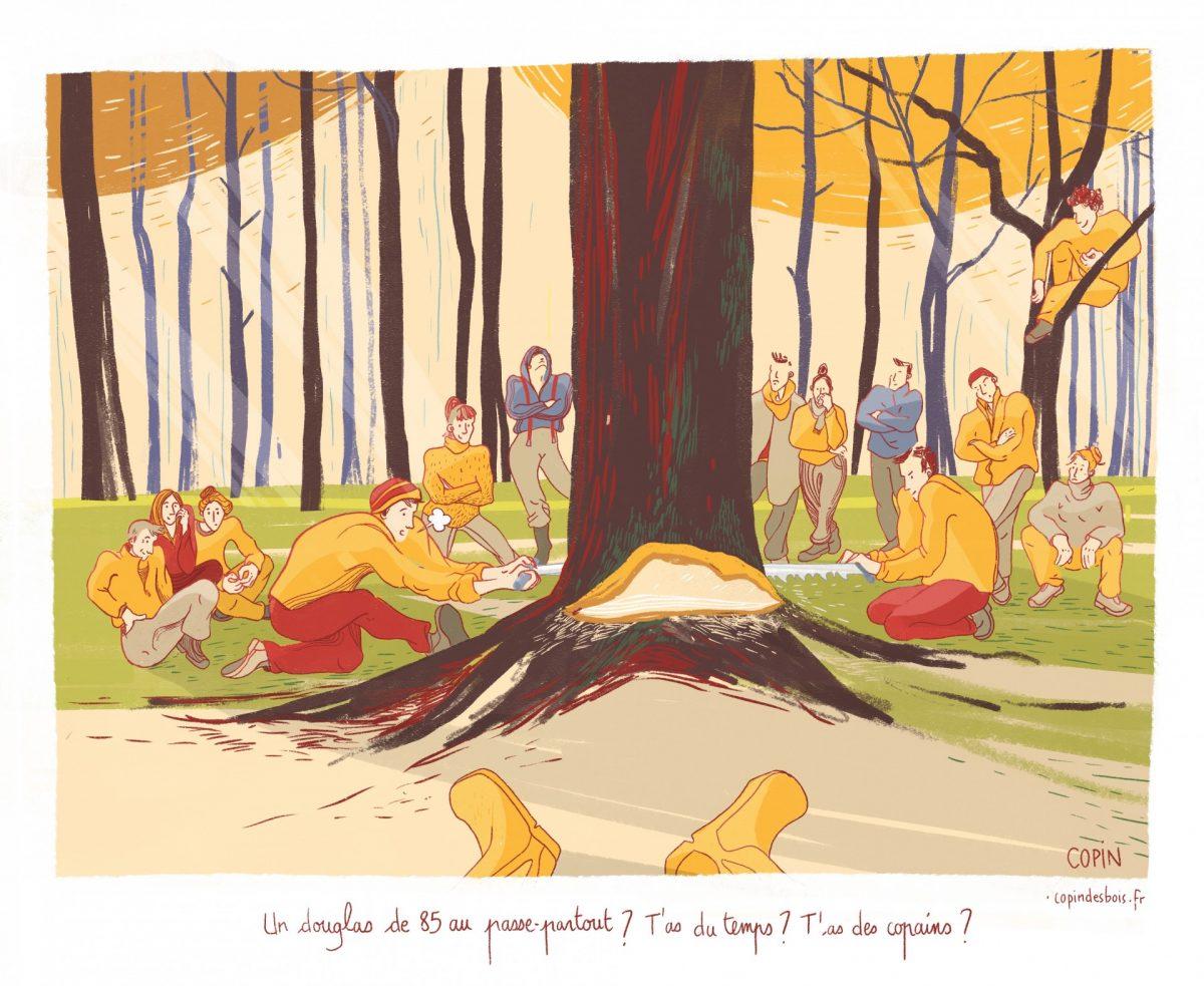 ZAD de Notre-Dame-des-Landes, bûcheronnage manuel en collectif, forêt de Rohanne, reportage dessiné, copin des bois