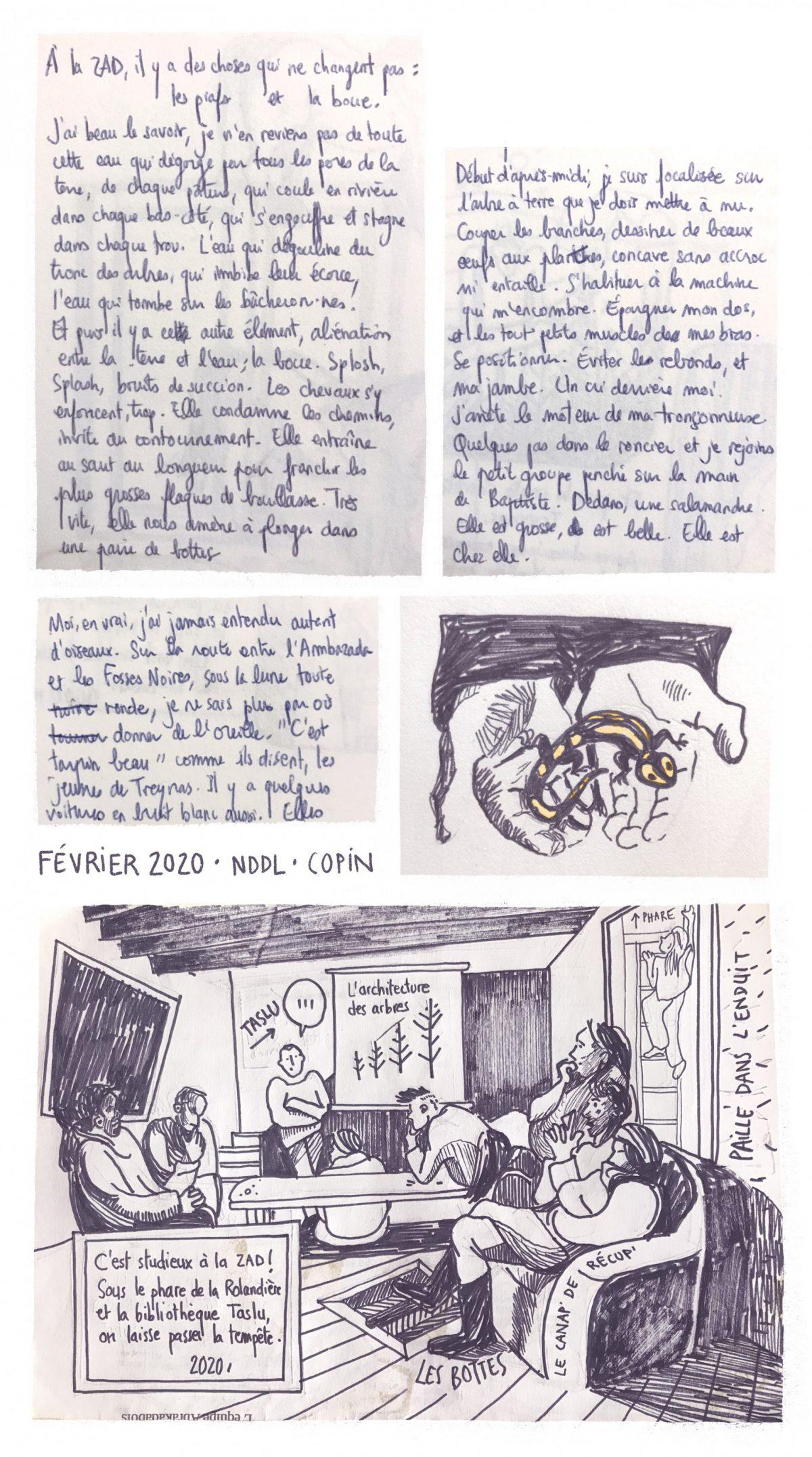 ZAD Notre-Dame-des-Landes, carnet sur un chantier école, copin des bois